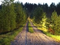 Kelias į sodyba